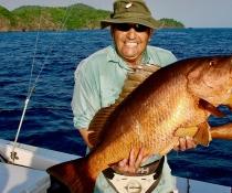 Cubera Snapper Isla de Coiba Panama