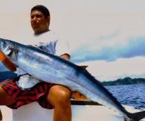Panama Fish