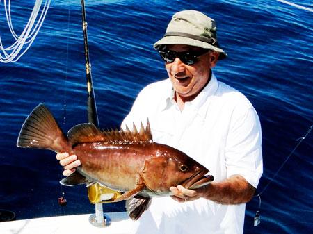 cherna gamefish panama fishing